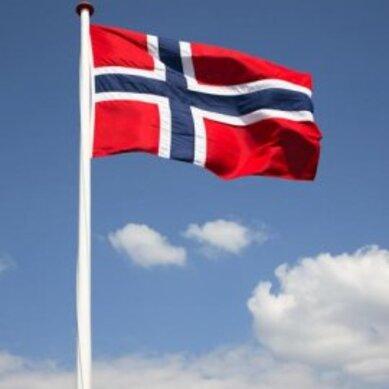 Bilderesultat for bilder av 17. mai og flagg