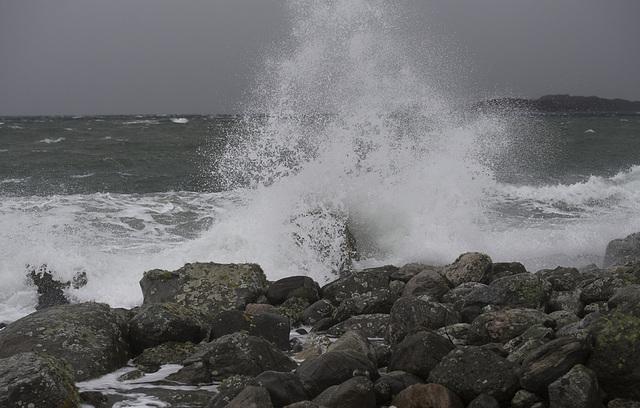 Det er meldt om gult farevarsel for vind flere steder i landet de neste dagene. Foto: Marit Hommedal / NTB