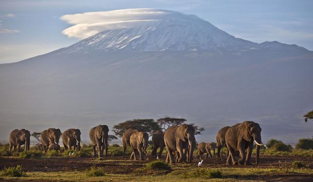 På bildet som er fra 2012, er snøen på toppen av Kilimanjaro godt synlig. Innen de neste 20 årene kan Afrikas isbreer være smeltet helt som følge av klimaendringene, advarer FN i en ny rapport. Foto: Ben Curtis / AP / NTB