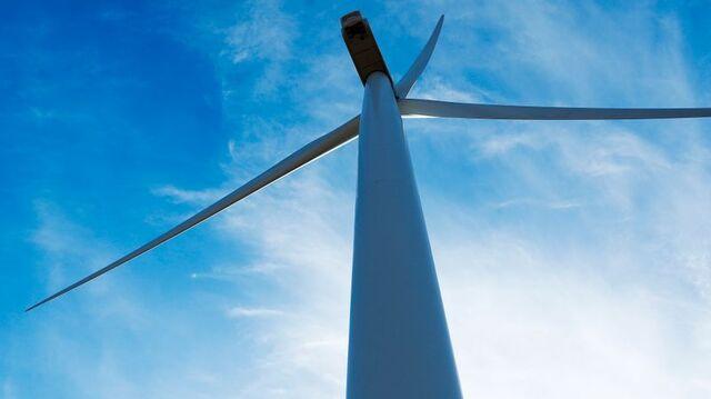 Undersøkelse fra Smøla viser at fugledødeligheten reduseres hvis rotorblader males svarte.