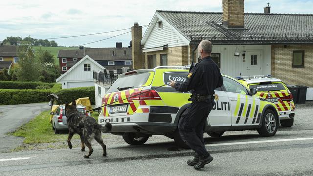 En av politiets hundepatruljer lette etter kniven i området rundt åstedet, som er inn veien til venstre i bildet.