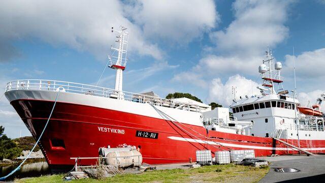 Fiskebåten «Vestviking» har vært lenket til kai i over ett år og gått glipp av fiskeri for titalls millioner på grunn av en familiekonflikt.