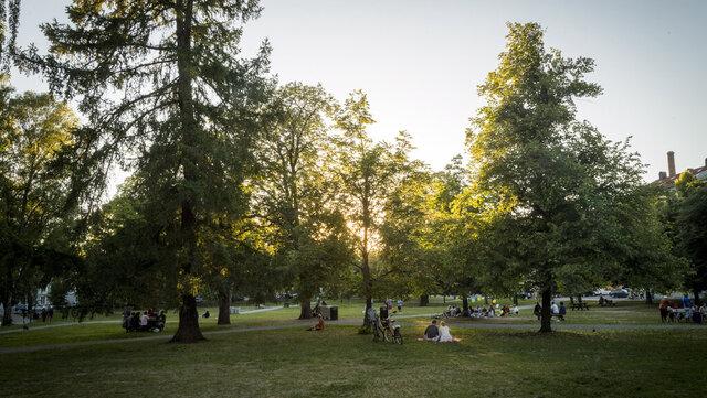 Smittetallene i Oslo er for første gang høyest i bydel Grünerløkka. Her fra Sofienbergparken.