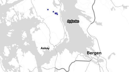 LYN: Det er registrert en del lynaktivitet (blå prikker) på Askøy torsdag morgen.