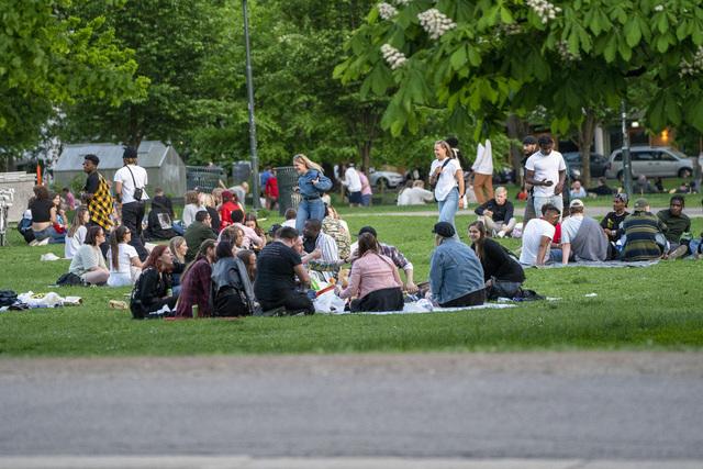 Det er registrert 212 nye koronasmittede i Norge det siste døgnet. Her sitter folk pent og pyntelig i kohorter og koser seg i Sofienbergparken. Foto: Terje Pedersen / NTB