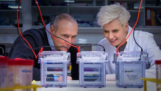 FORSKER: Richard Godfrey og Linn Iren Hodneland i Bergenbio i aksjon på laboratoriet. Her separerer de proteiner på en gel.