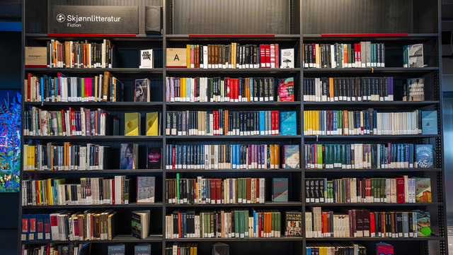Om lag halvparten av landets biblioteker er utsatt for angrepet. Illustrasjonsfoto: Håkon Mosvold Larsen / NTB