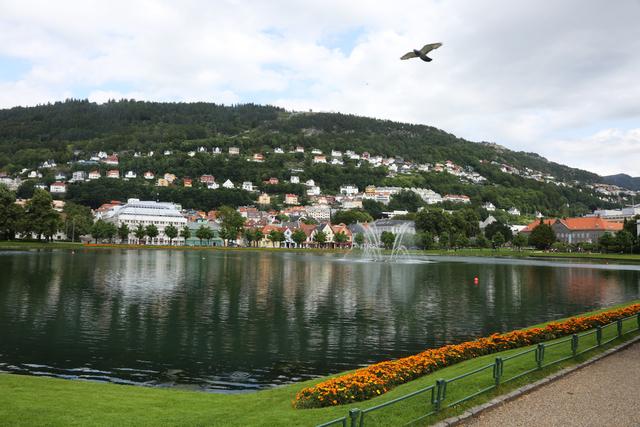 Lille Lungegårdsvannet beliggende sentralt i Bergens bybilde med Fløyen i bakgrunnen. Foto: Erik Johansen / NTB