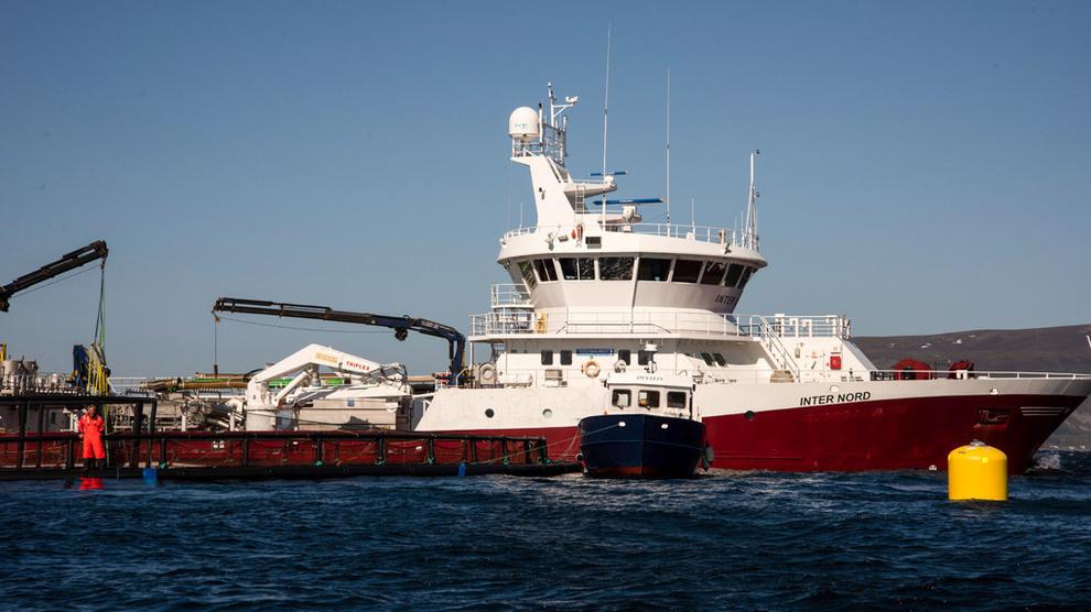 <p><b>FULL GASS:</b> Inter Nord og de syv om bord har jobbet på spreng i tre døgn. I natt lykkes de med å redde ut all fisken før algene drepte dem. Her er skipet i full fart på vei gjennom Raftsundet på vei tilbake til Våtvika natt til onsdag.</p>
