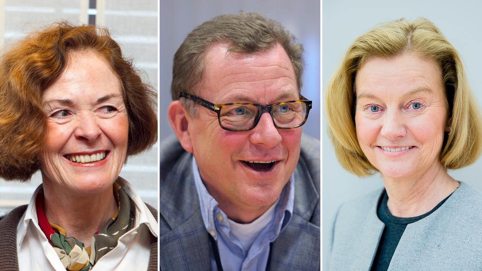 <p><b>JURYEN:</b> Siri Hatlen, John G. Bernander og Gunn Wærsted skal avgjøre hvem som vinner Eksportprisen for 2016.</p>