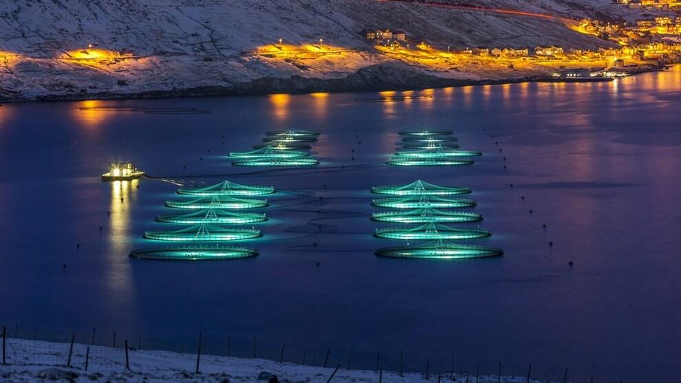 <p><b>INVESTERER:</b> Bakkafrost investerer 2,5 milliarder danske kroner de kommende årene for å nå målet om 70 prosent vekst innen 2023. Foto: Bakkafrost</p>