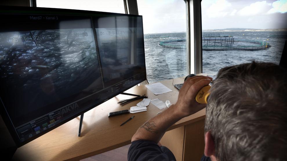 <p><b>GRØNN VEKSTNÆRING:</b> Maritim sektor kan skape 15.000 grønne arbeidsplasser i årene som kommer.</p>