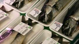 <p><b>I FISKEDISKEN:</b> Norsk makrell med norsk opphavsmerke i koreansk fiskedisk.</p>