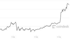 <p><b>PRISFEST:</b>Bitcoin fikk et hopp i prisen lørdag. Så lagt i august har prisen steget rundt 12 prosent.</p>