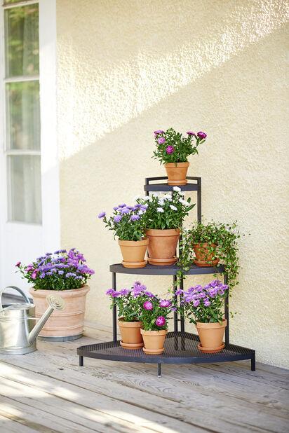 Hjørnehylle til planter