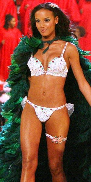 Victorias secret fantasy bra 1