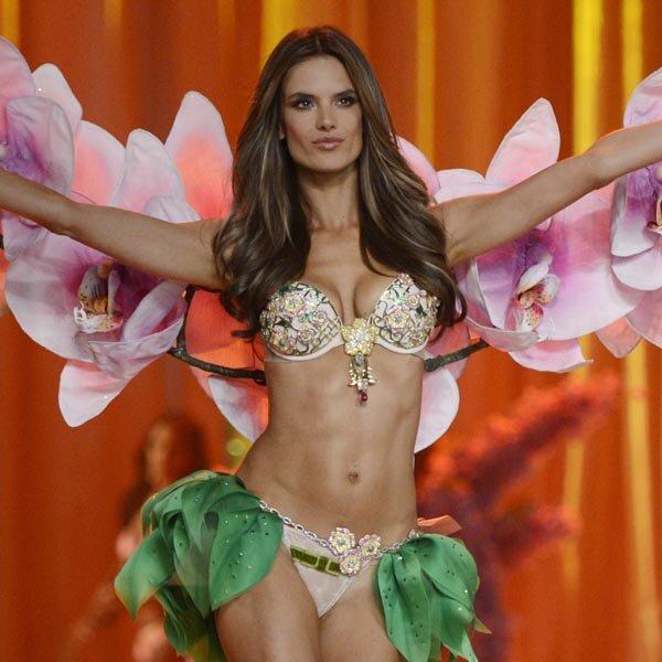 Victorias secret fantasy bra