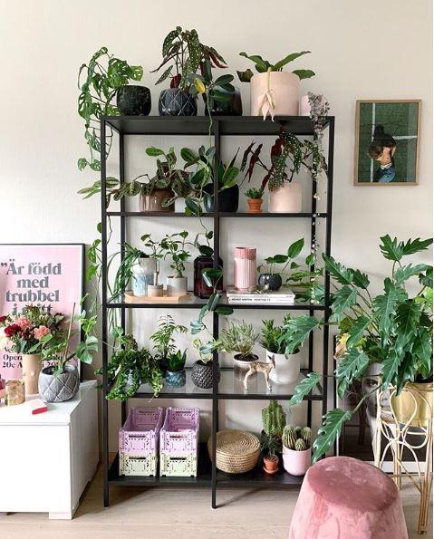Trendy planter