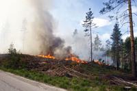 OBS-varsel om skogbrannfare i flere fylker