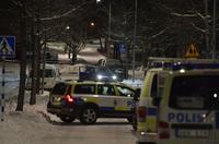 Svensk krimprofessor: - Gjengvolden skyldes ikke for stor innvandring