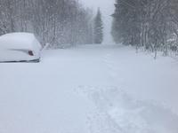 Ekstreme snømengder på Østlandet