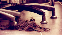 Politiet: Misfornøyd kunde klippet håret av egen frisør