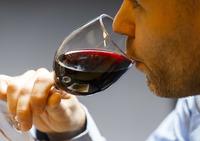 Forskning: Menn tåler ikke mer alkohol enn kvinner