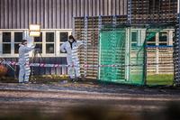 Dobbeltdrapssiktet gutt sier Tone Ilebekk (48) var tilfeldig offer