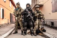 Riksrevisjonen: Politiet og Forsvaret samarbeider for dårlig